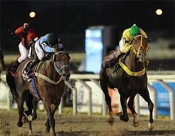 Brazilian Horse Racing