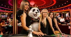 Live roulette dealers with panda