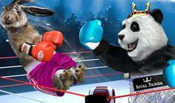 Royal Panda boxing