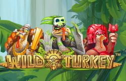 Wild Turkey gokkast