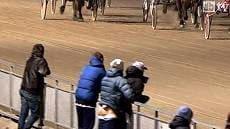 Sex horse race