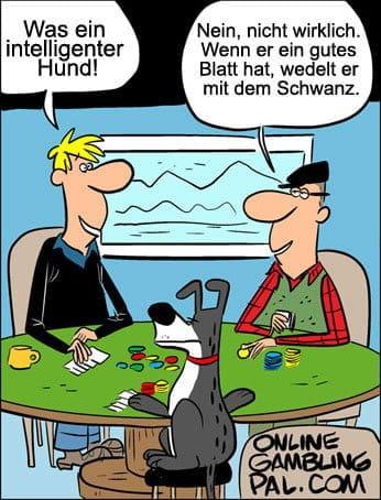 Poker spielender Hund